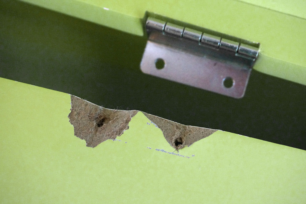 ausgerissene schrauben reparieren - anleitung @ diybook.at