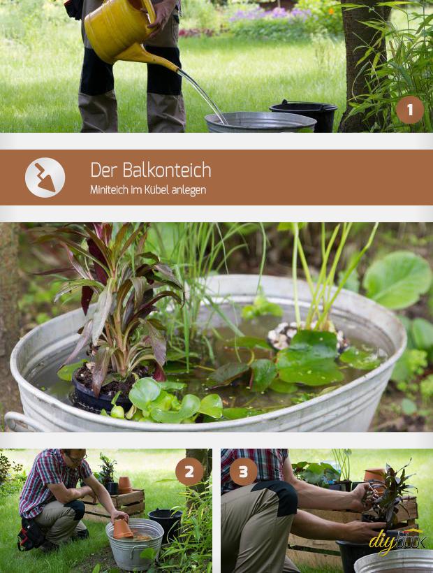 Der Balkonteich Miniteich Im Kubel Anlegen Anleitung Diybook At