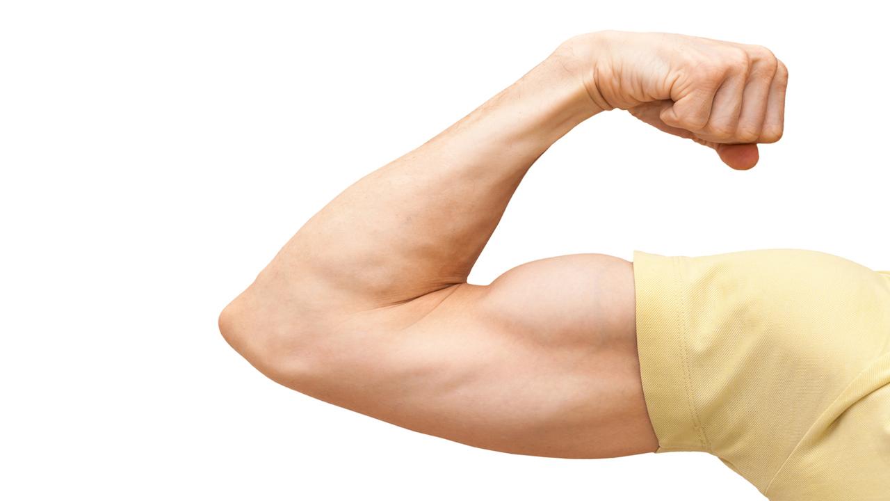 Muskelkraft