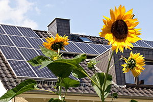 photovoltaik eigenverbrauch informationen vom elektriker elektroinstallation. Black Bedroom Furniture Sets. Home Design Ideas