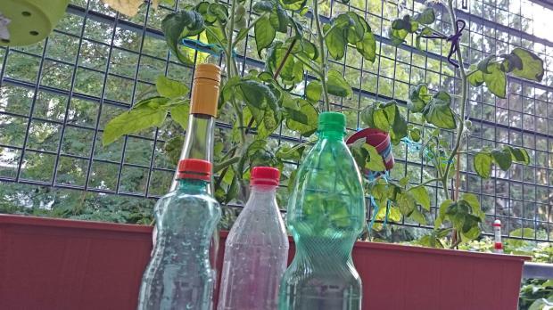 Wichtigstes Material Jede Menge Leere Flaschen