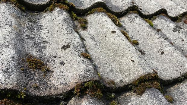 Moos nagt an den alten Dachziegeln