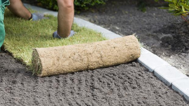 Rollrasen auf vorbereiteten Boden auslegen