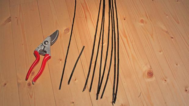 Werkzeug und Material für die Weidenspirale