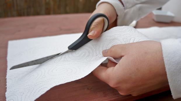 Küchenpapier in lange Streifen schneiden