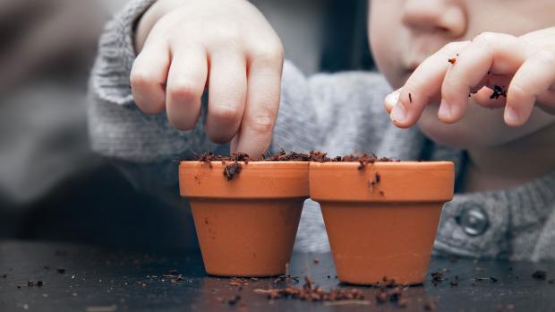 Kind bepflanzt Mini-Blumentöpfe
