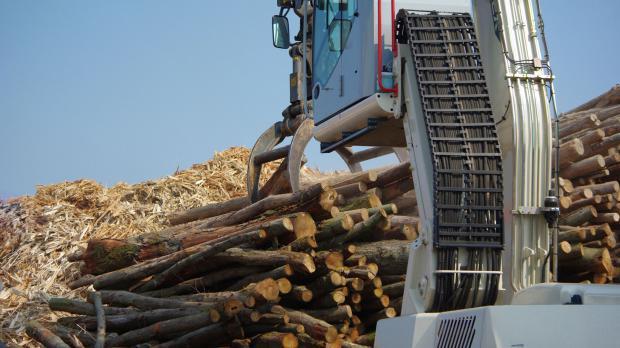 Holzverarbeitung in der Pelletsproduktion