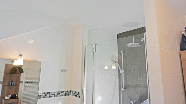 Badezimmer roter schimmel slagerijstok - Badezimmer schimmel ...