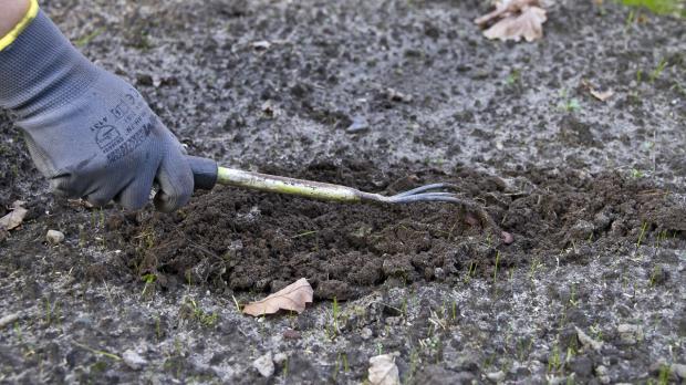 Gartenboden zum Pflanzen auflockern