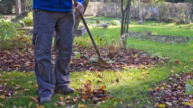 der garten im oktober - tipps & tricks vom gärtner @ diybook.at, Gartengerate ideen