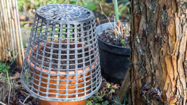 Saatgut geschützt im Freien aufstellen