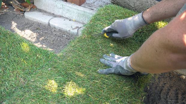 Niveau an Rasenkanten 1-15 cm unterhalb der Kante