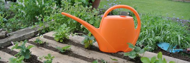 Alte Paletten im Garten nutzen - Lilliybeet-Pixabay.com