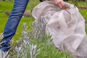 Endspurt im Grünen - Garten auf Winter vorbereiten