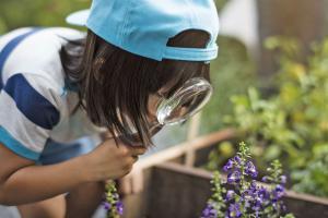 Gartenarbeit mit Kindern: Motivation wecken und Ziele stecken