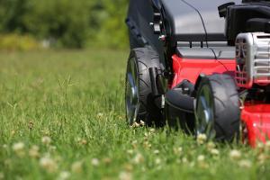 Gute Rasenmäher finden: Darauf ist zu achten!