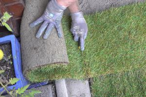 Rollrasen verlegen – Anleitung für das perfekte Grün