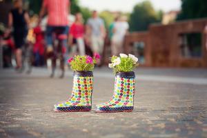 Urban Gardening: Echte DIY-Tipps für einen erfolgreichen Start!