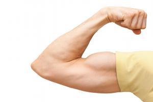 Die Muskelhypothek - Mit Eigenleistung Hausbau betreiben