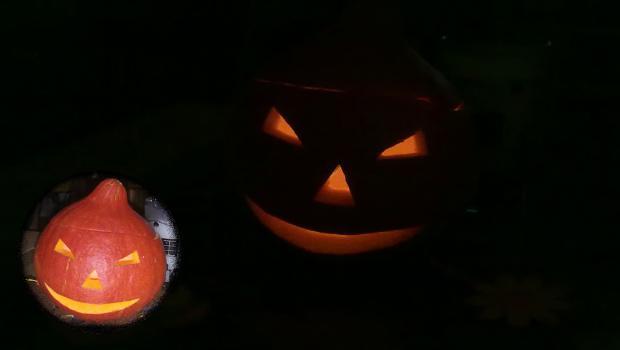 Halloween Kürbislaterne Haltbar Machen Geht Das In Events