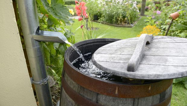 Beliebt Regenwasser für den Garten – Das muss jeder wissen! in Garten YQ14