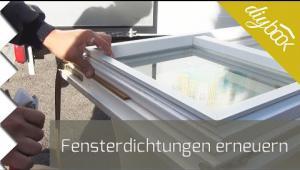 Embedded thumbnail for Fensterdichtungen selbst erneuern
