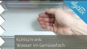 Bosch Kühlschrank Wasser Sammelt Sich : Wasser im kühlschrank u die lösung video anleitung diybook at
