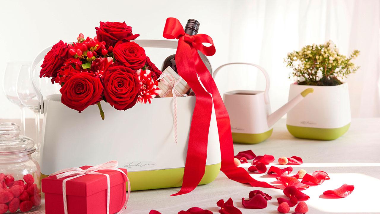 valentinstag f r gartenfreunde 3 geschenkideen zum. Black Bedroom Furniture Sets. Home Design Ideas